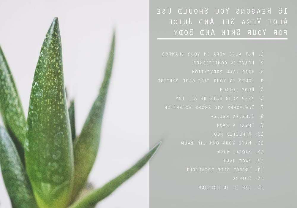 16 reasons you should use aloe vera